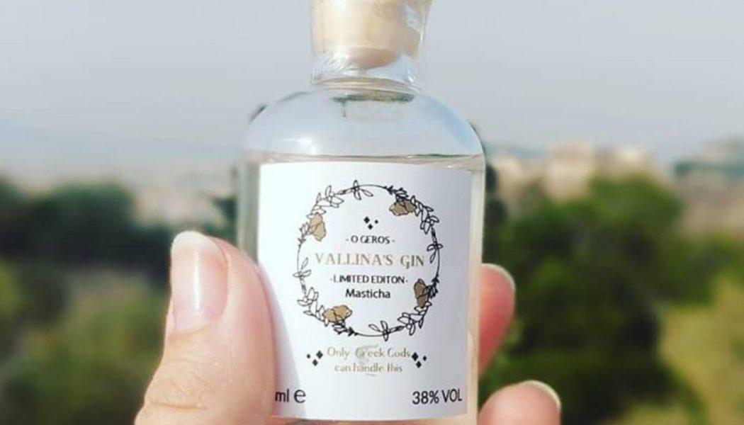 horeca belgie vallina gin