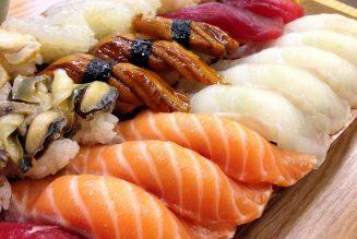 sushi Horeca België