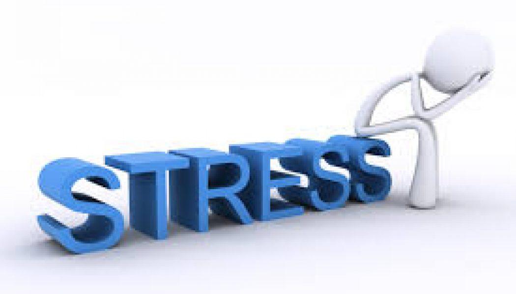 IS UW HORECAZAAK EEN BRON VAN STRESS?