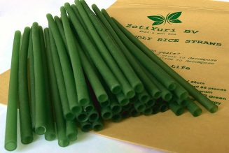 Horeca Belgie online horeca beurs Green straws with bag