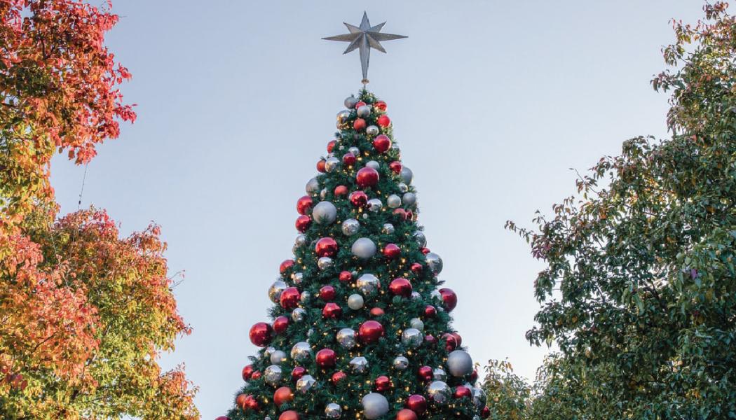 Belangrijke Kerstboodschap: Piek niet te vroeg